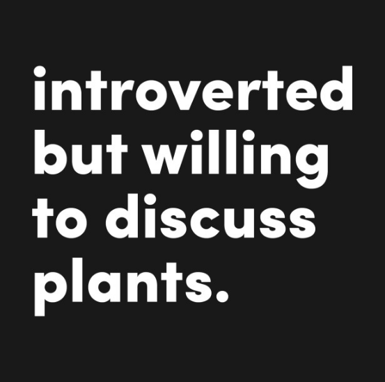 Introverted but willing to discuss plants. Hoodie