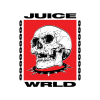 Juice Wrld 999999999 T Shirt